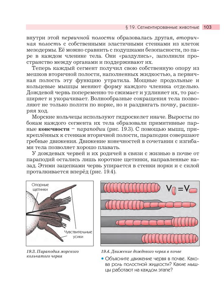 Тест про моллюсок по биологии учебник 7 класс вахрушев